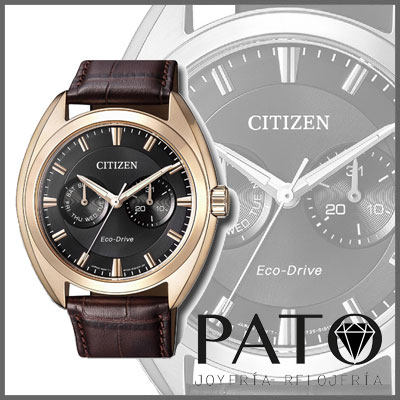 Citizen Watch BU4018-11H