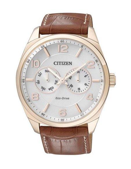 Citizen AO9024-16A Eco-Drive Watch