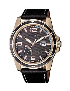Citizen AW7033-16H Eco-Drive Watch OF COLLECTION