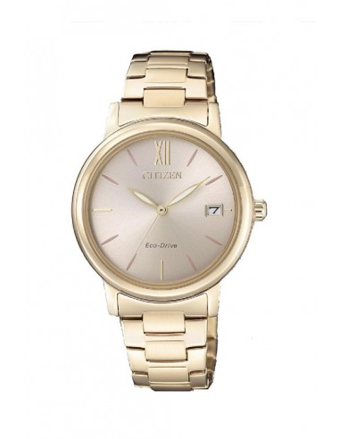 Reloj Citizen Eco-Drive FE6093-87X