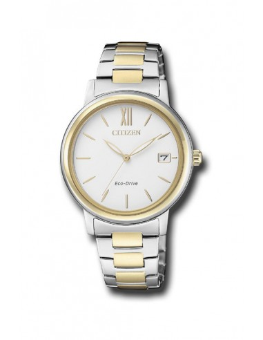 Reloj Citizen Eco-Drive FE6094-84A