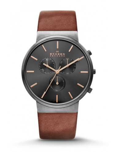 Reloj Skagen Ancher SKW6106
