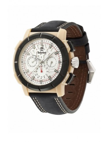 Reloj Timberland TBL13325JPBEB04