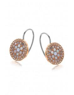Fossil Earrings JF01737791