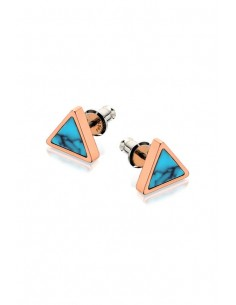 Fossil Earrings JF02638791