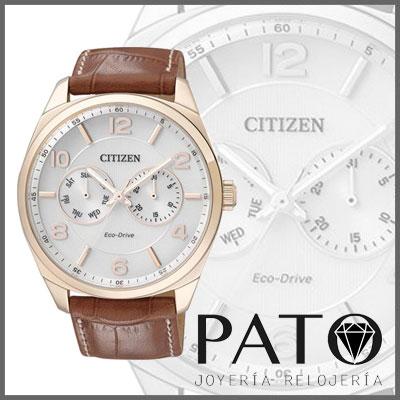 Citizen Watch AO9024-16A