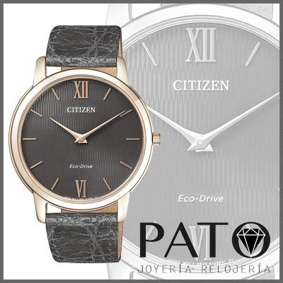 Montre Citizen AR1133-31H