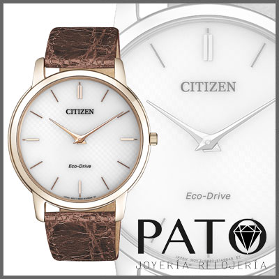 Montre Citizen AR1133-40A
