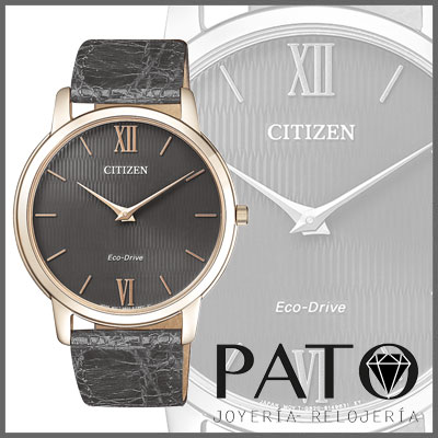 Citizen Watch AR1133-31H